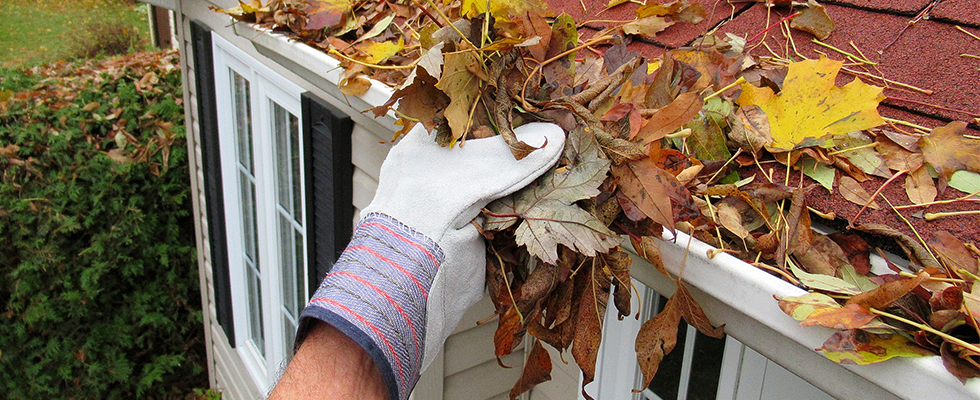 5 Tips for Fall Roof Maintenance