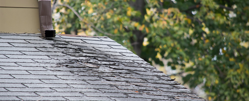 Signs Your Roof Has Wind Damage